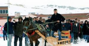 Ahır Dağı Atlı Kızak Türkiye Şampiyonası