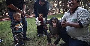 Hayvanat Bahçesine 3 Milyon Ziyaretçi