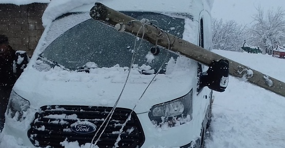 Yumaklıcerit'te Kar Direk ve Ağaçları Yıktı