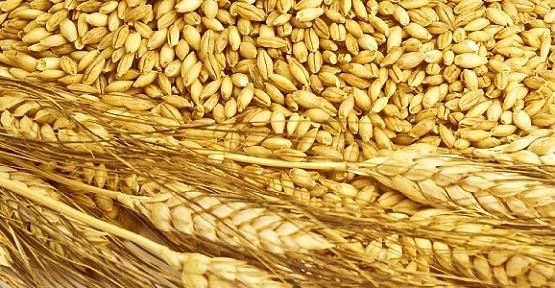 Buğday 1 Lira 38 Kuruş