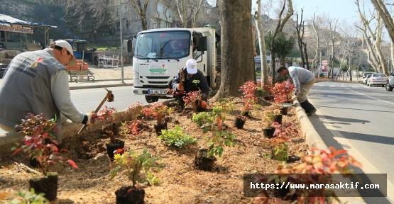 Büyükşehir Bahara Hazırlanıyor