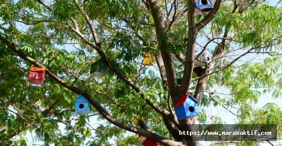 Fakülte Çevresi Kuş Evleriyle Donatıldı
