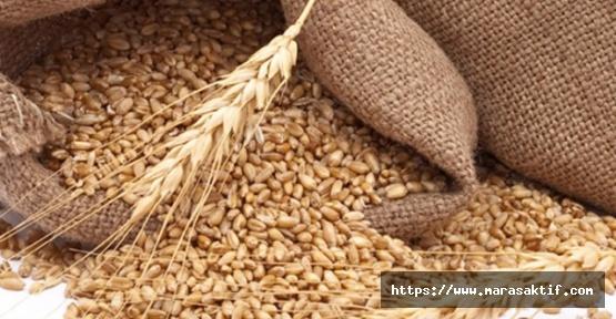 Buğday 1 Lira 41 Kuruş