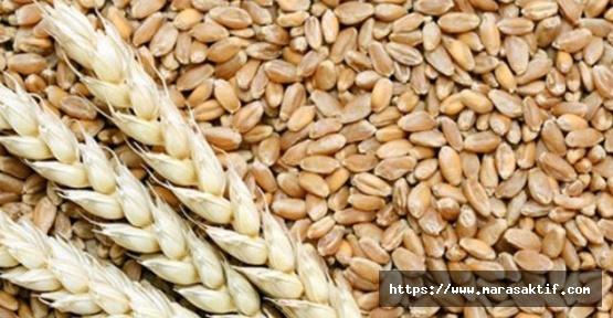 Buğday 1 Lira 40 Kuruş