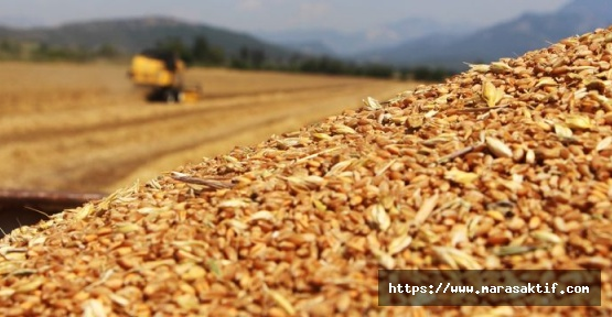 Buğday 1 Lira 43 Kuruş