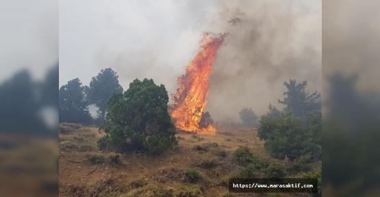 Kahramanmaraş Ormanları Cayır Cayır Yanıyor