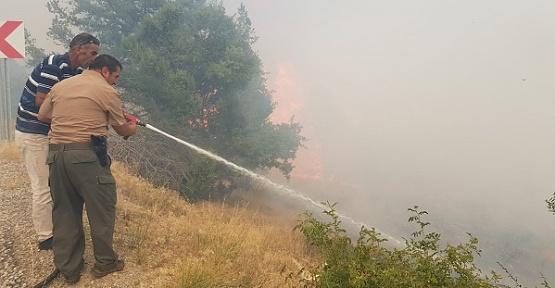 Kepez Dağı'ndaki Yangın Söndürüldü