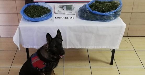 Kahramanmaraş'ta 2 Torbacı Yakalandı