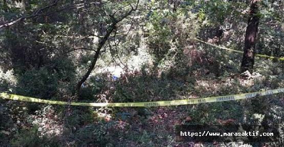 Hartlap Ormanı'nda Cinayet