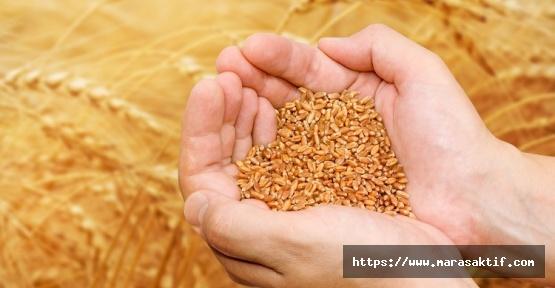 Buğday 1 Lira 70 Kuruş