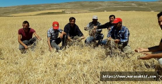 10 Bin Dekar Tarım Alanını Dolu Vurdu