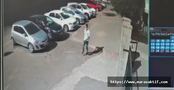 Kahramanmaraş'ta Kapkaççı Tutuklandı
