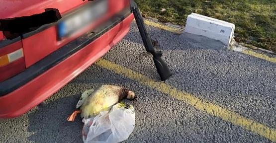 Tüfekle Ördek Avına Ceza