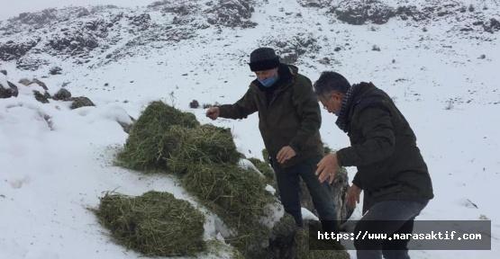 Besleme Çalışmalarında Kaçak Av Yapan 3 Kişi Yakalandı