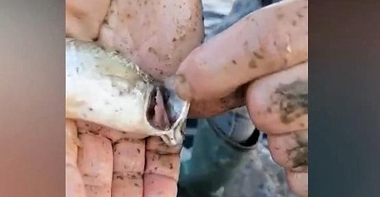 Kahramanmaraşlı Balıkçılar İsyan Etti