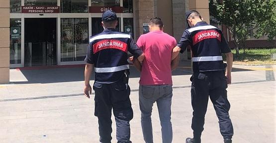 Kahramanmaraş'ta Arı Hırsızı Tutuklandı