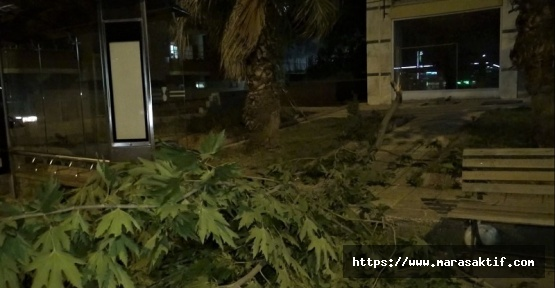 Kahramanmaraş'ta Rüzgar Yıktı Geçti