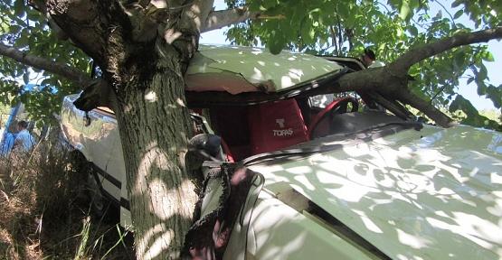 Otomobil Ağaca Çarptı 2 Yaralı