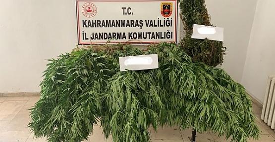 Uyuşturucudan 1 Kişi Gözaltına Alındı