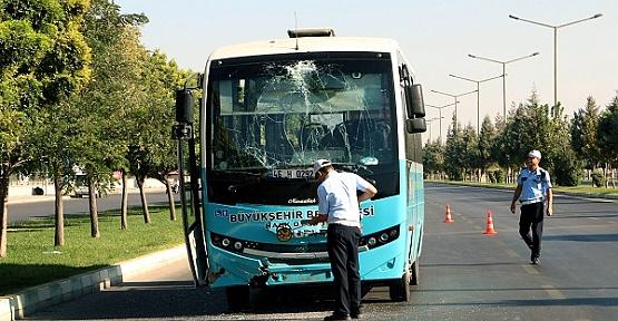 Kahramanmaraş'ta Otobüsler Çarpıştı