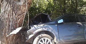 Araç Ağaca Çarptı 2 Ölü