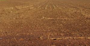 Arazi Kavgası 1 Ölü