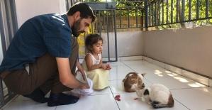 İmam Sokak Kedilerini Sahiplendi