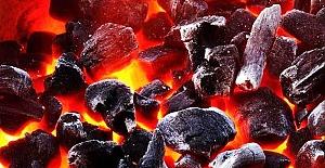 Karbonmonoksitten 25 Kişi Zehirlendi