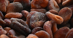 Organik Kuru Kayısı 29 Lira