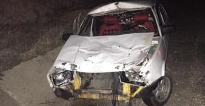 Otomobil Ata Çarptı 2 Yaralı