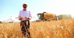 10 Bin Yıllık Buğdayın Hasadı Yapıldı
