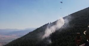Kahramanmaraş Ahır Dağı'nda Orman Yandı