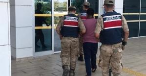 Fıstık Hırsızı Tutuklandı