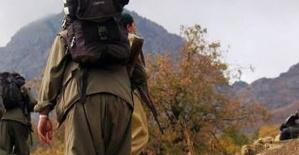 HDP'li Vekilin Terörist Oğlu Tutuklandı