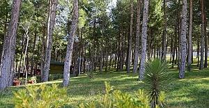 Dulkadiroğlu'nda Doğal Güzellikler Ön Plana Çıkıyor